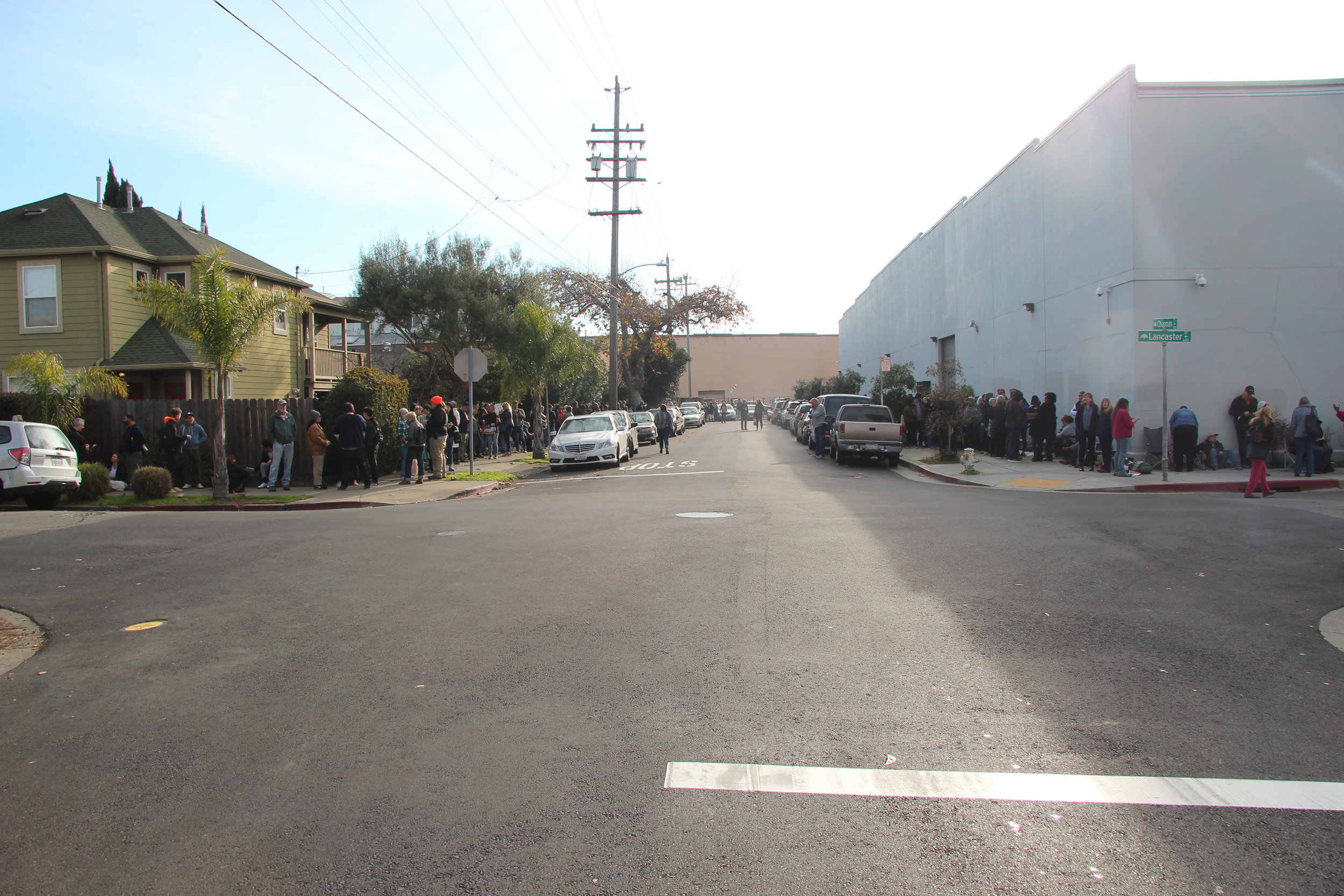 Mid-line of the White Elephant Preview Sale.