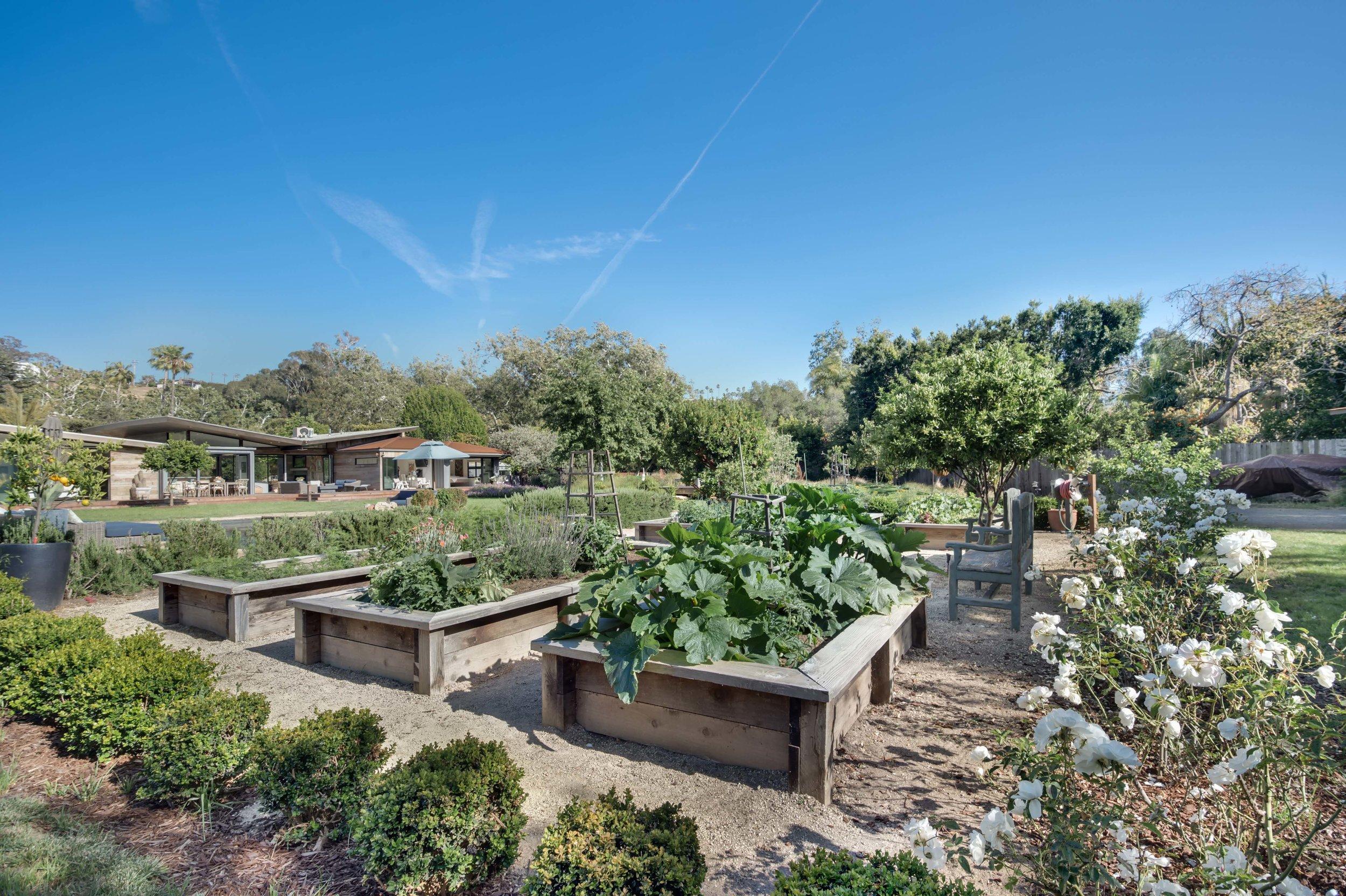 10 garden 1.jpg