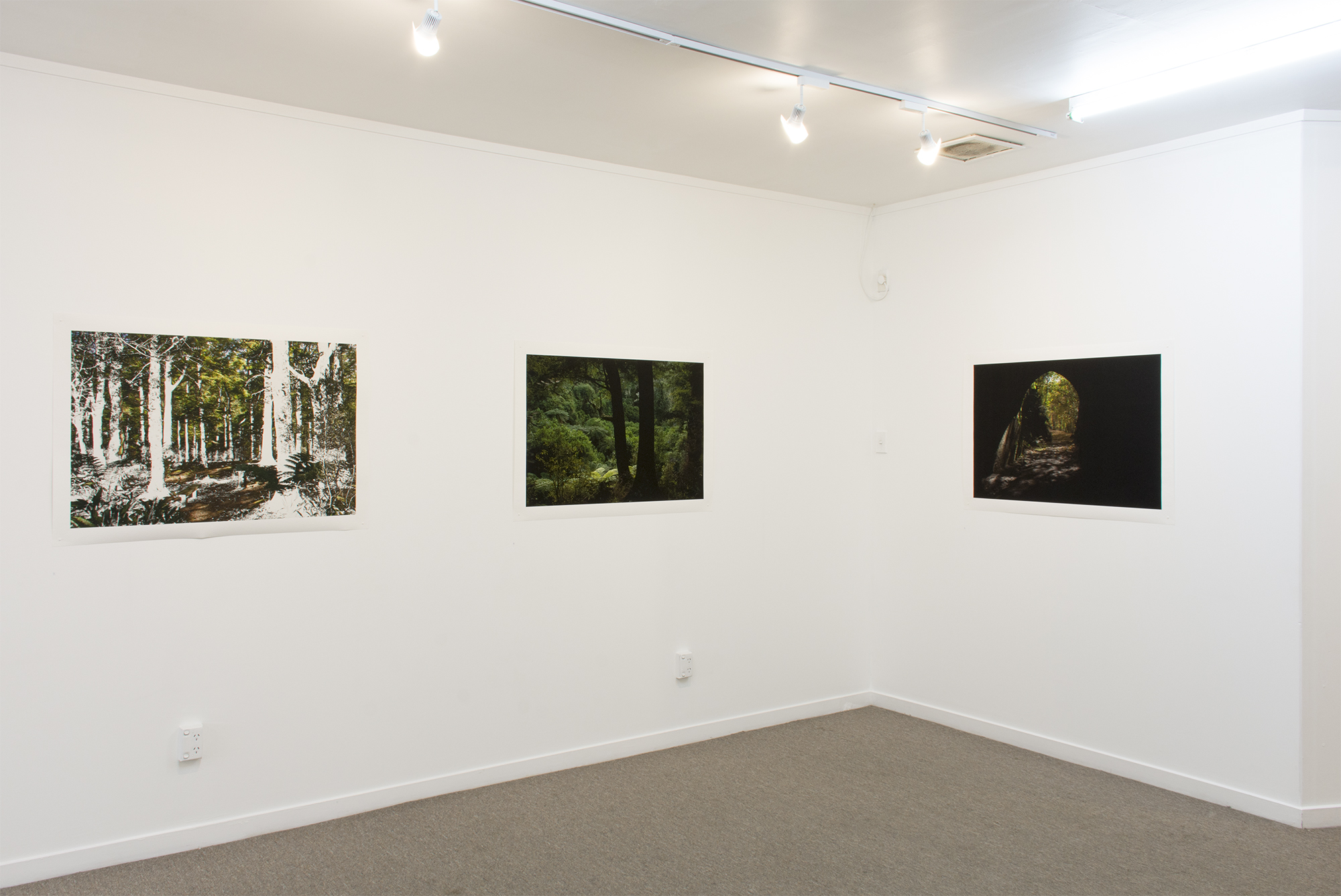 Photospace Gallery Wellington March/April 2017 #2
