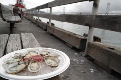 Enjoying some freshly shucked kumamoto oysters over the bay
