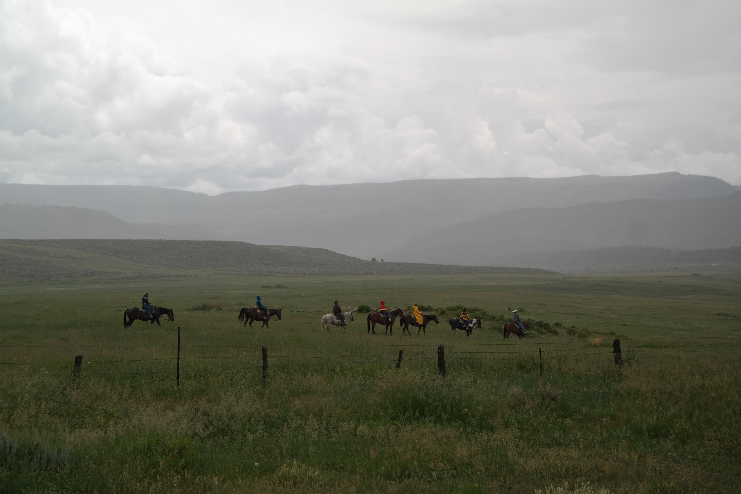 Personally not a huge fan of horeseback riding, however watching this group trek through I really was inspired to go horseback riding in the mountains next time.