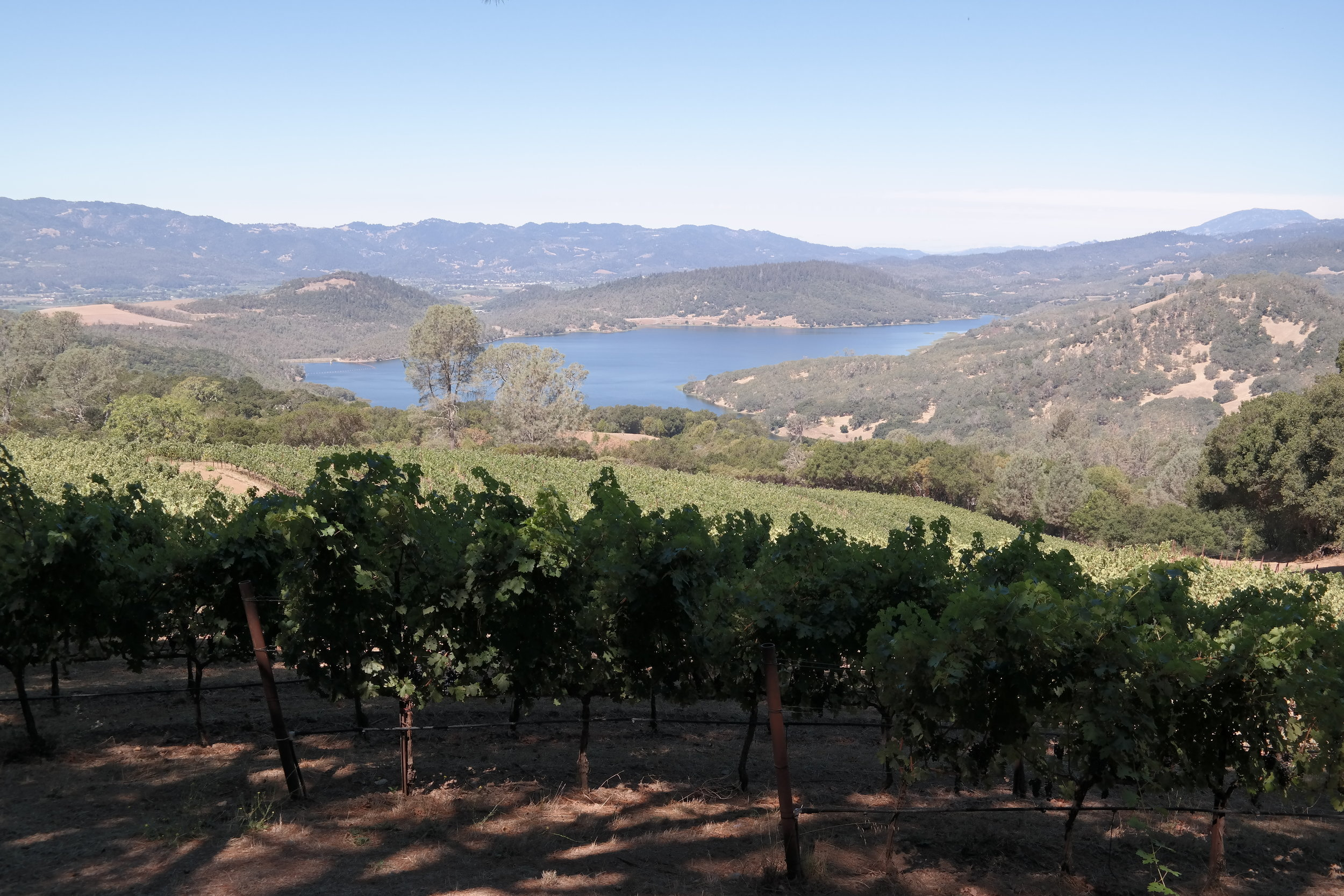 Forbidden Views of Napa's Lake Hennessey