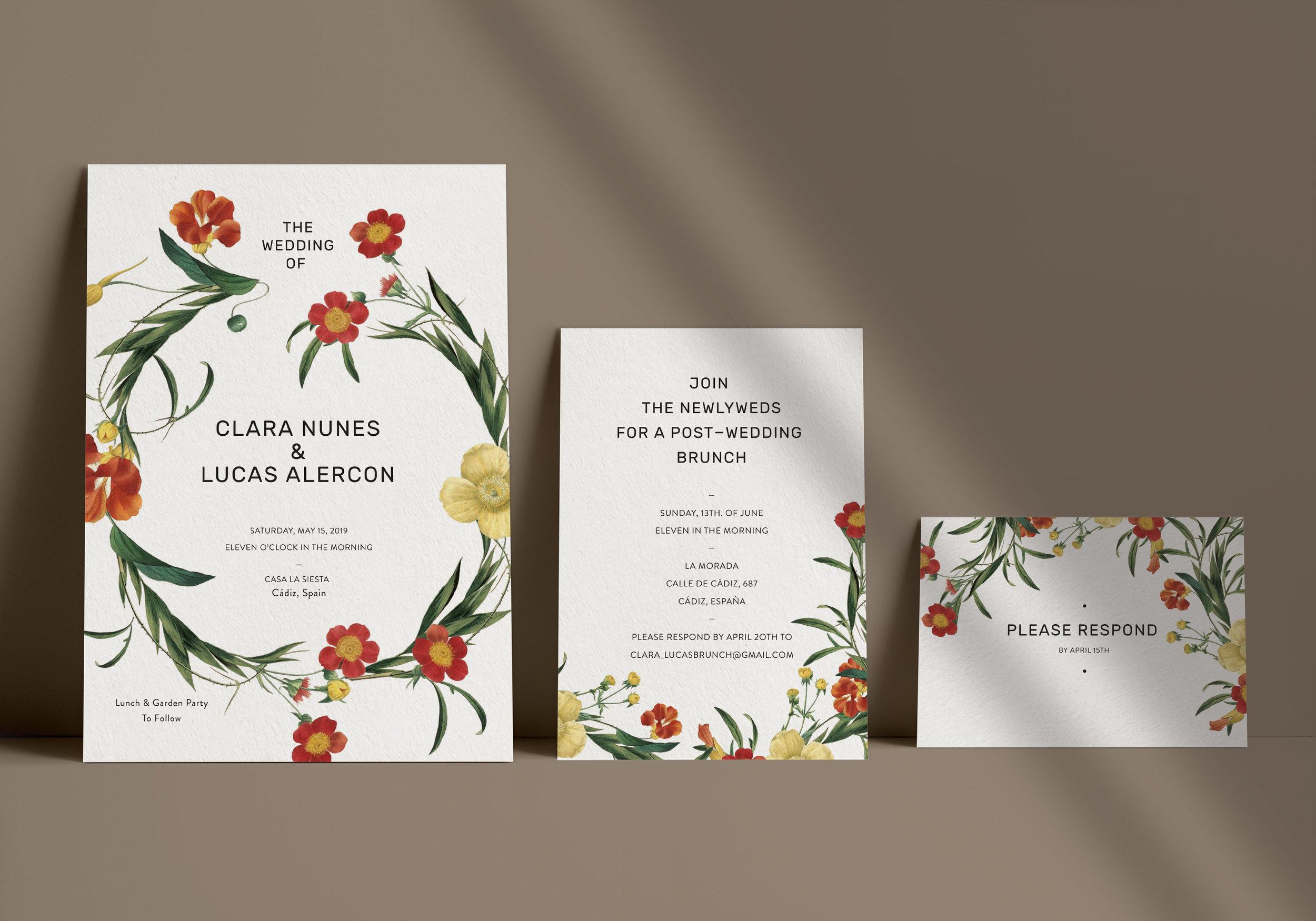 Carta Plena Clara Suite Cards