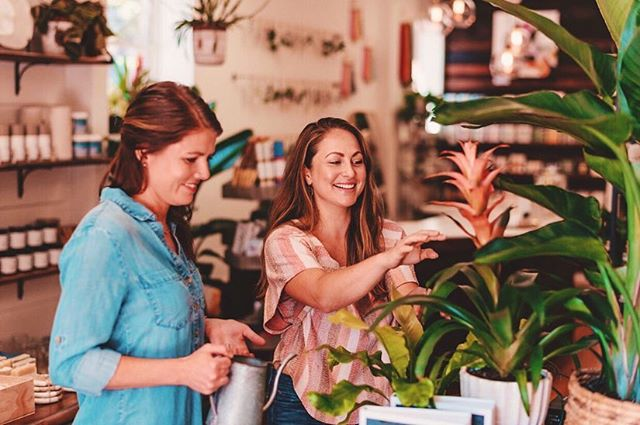 On Monday, we water our plants!💁🏽♀️🌿💦🌱What day do you water?! We definitely recommend adopting a schedule and routine for plant care. Once a week watering is usually perfect for most of your tropical indoor beauties but remember that it's important to get to know your plants. Check the soil, especially in the winter time to avoid over watering because if your plant is still saturated from the week before, just skip a week! That being said, some plants like ferns and spathiphyllums drink a lot of water so they may need to be checked twice a week to avoid under watering which can stress your plants over time. Getting in the zone with your plants and taking care of them can be such a wonderful way to zen out, so pick and day and spend some time with your green babies! 🌱🌿P.S. They also enjoy misting to create a humid environment and a good leaf clean so they can breath and thrive free of dust 🙌🏽 Photo Credit: @mollylouphoto