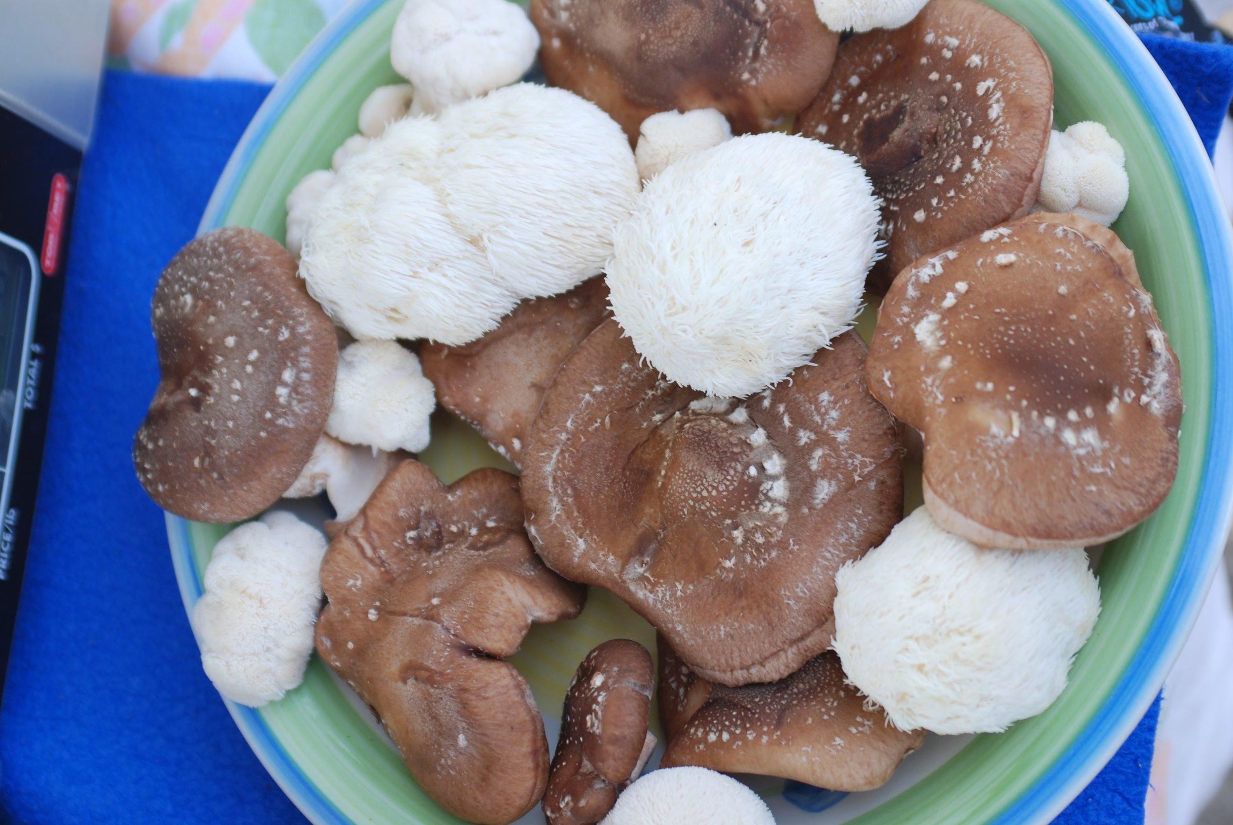 produce mushrooms platter.JPG