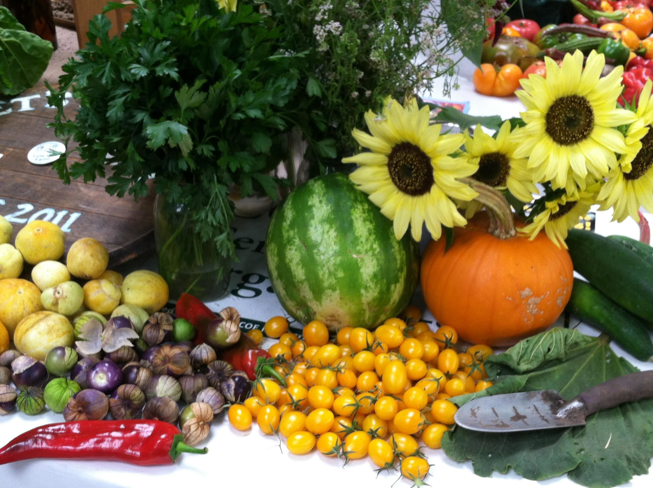 produce tomatillos best.jpg