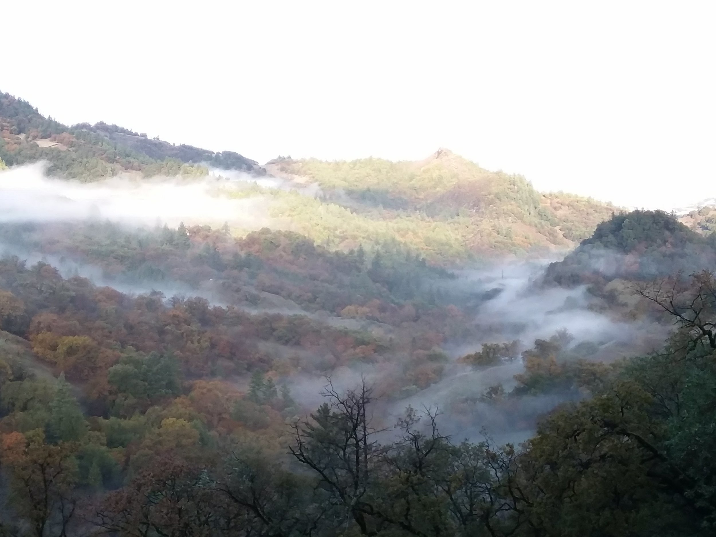 stones throw fog in valley.jpg