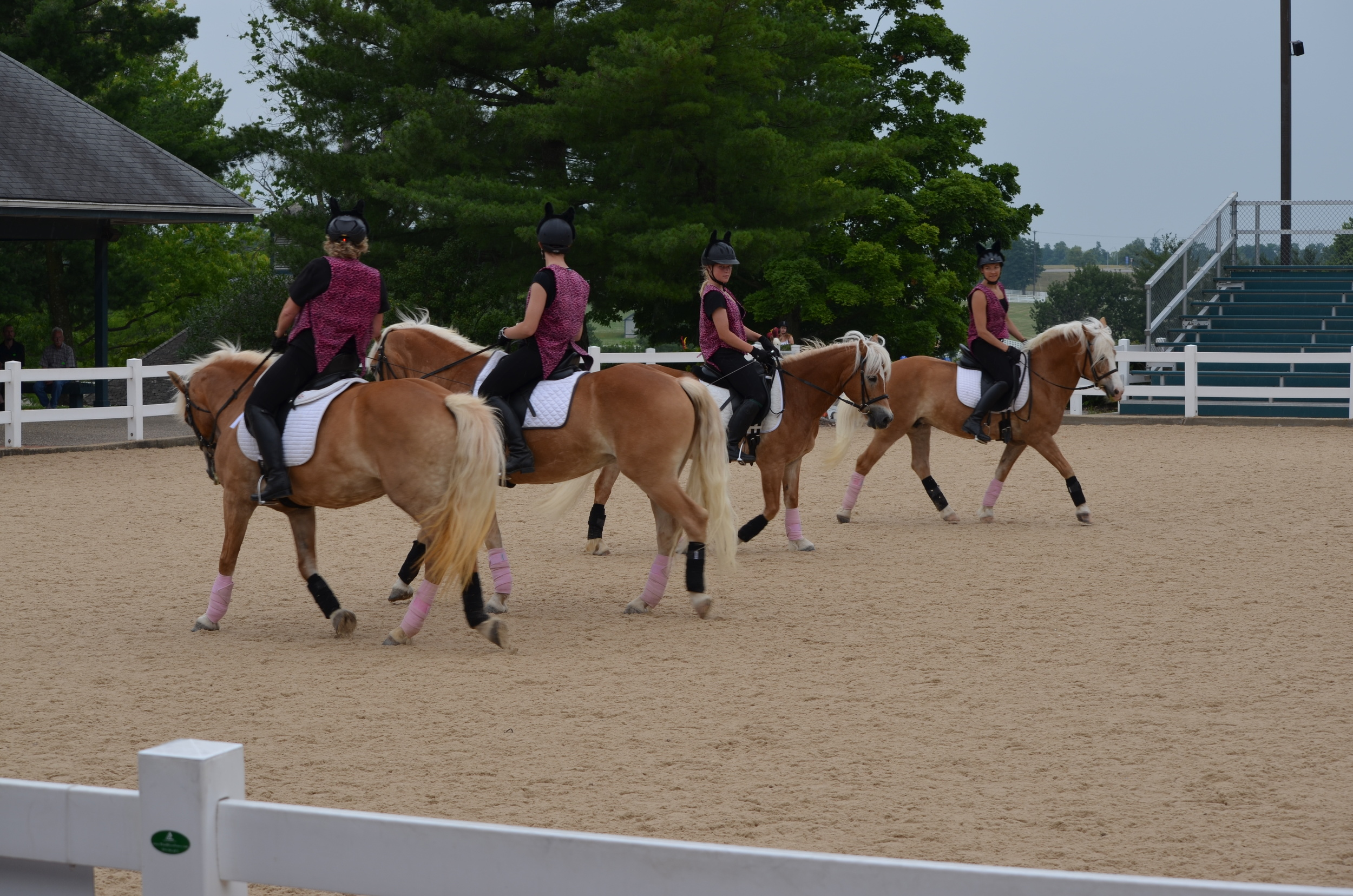 The Happy Haflingers quadrille performing at the Kentucky Horse Park