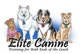 ellite canine.jpg