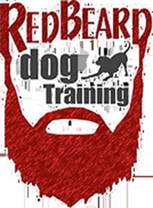 red beard dog training.png