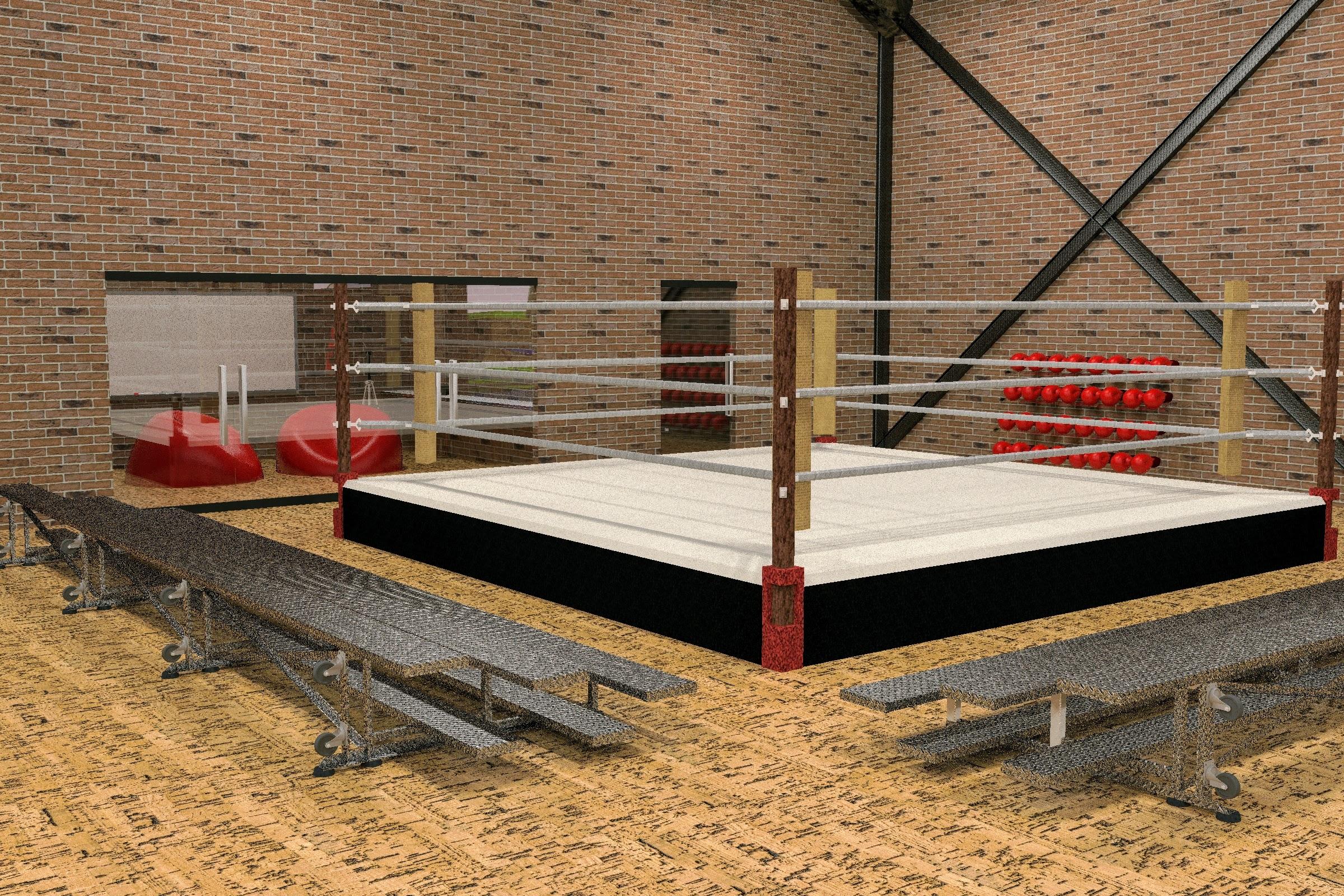 Boxing ring 1.jpg