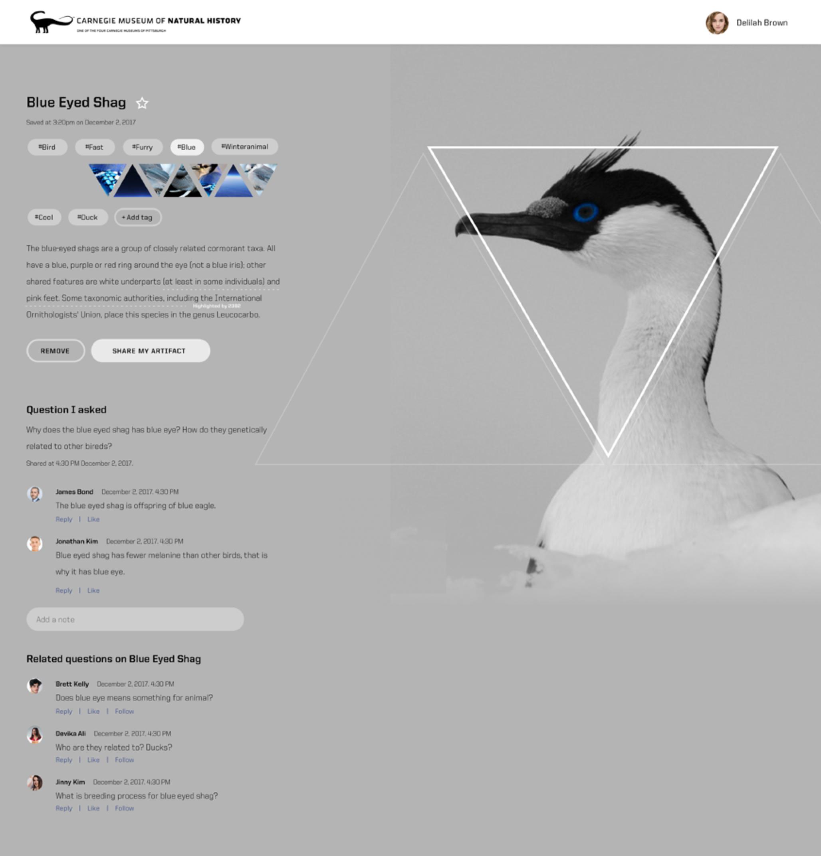 Aspen Final Website 2.png