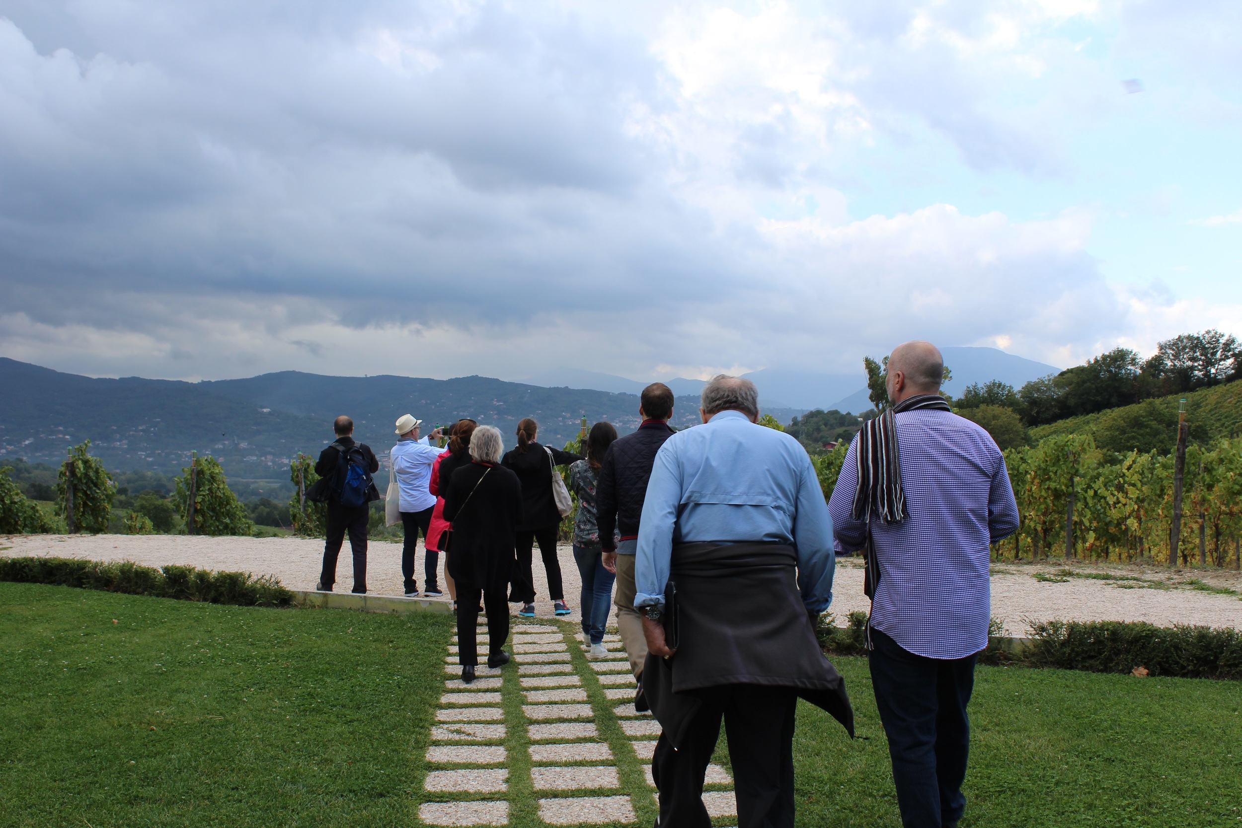 Guests on the October 2015 wine tour walking out to see the Greco di Tufo grapes on the vines.