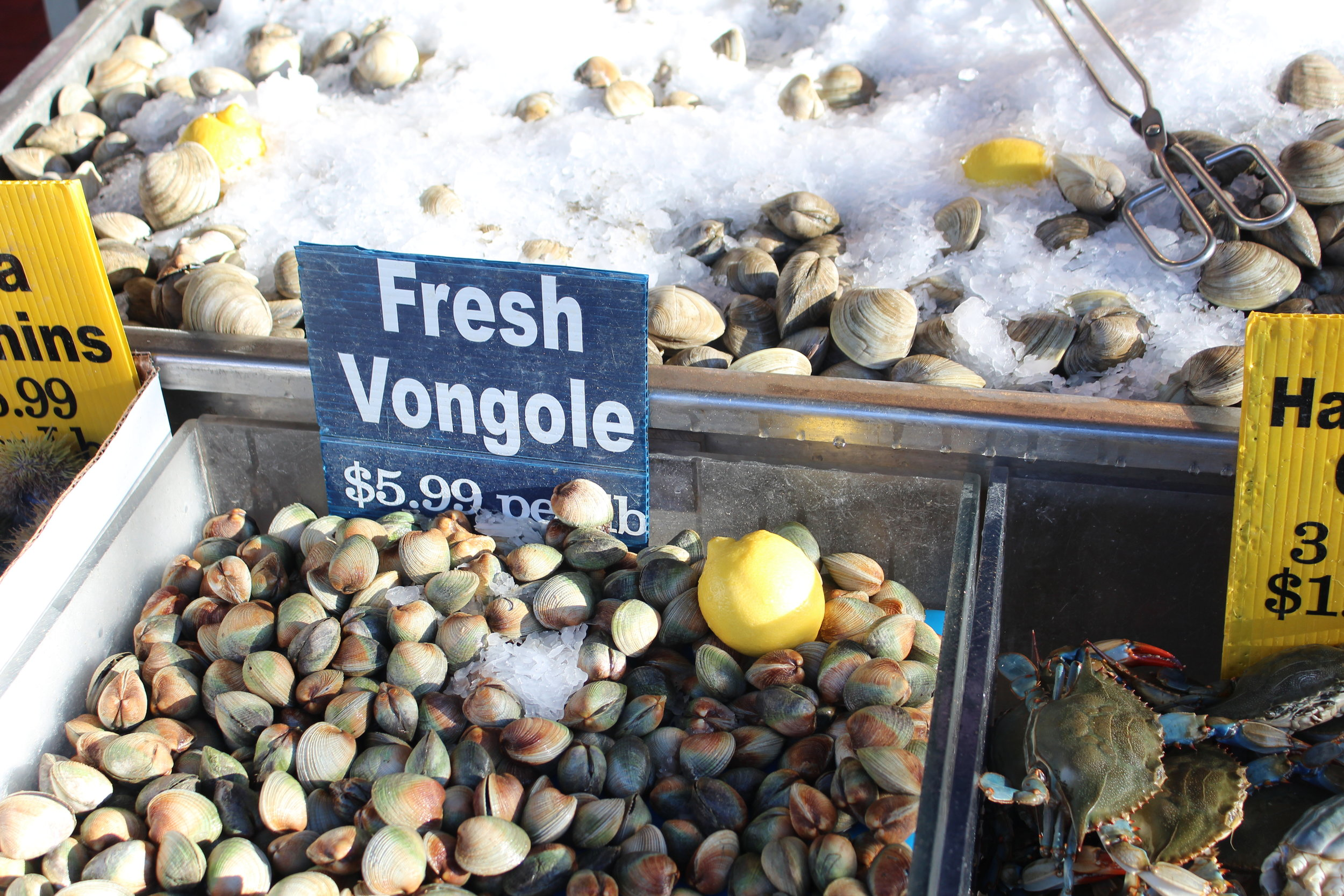 Vongole at Cosenza's Fish Market on  Arthur Avenue in the Bronx's Little Italy .