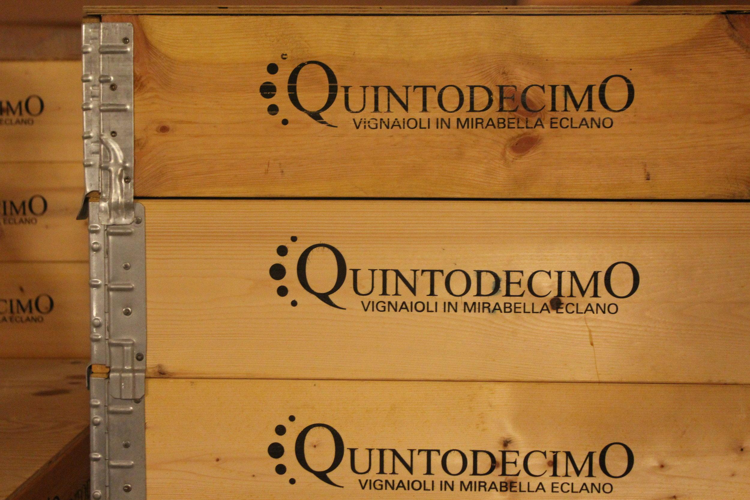 Luigi Moio's vineyard