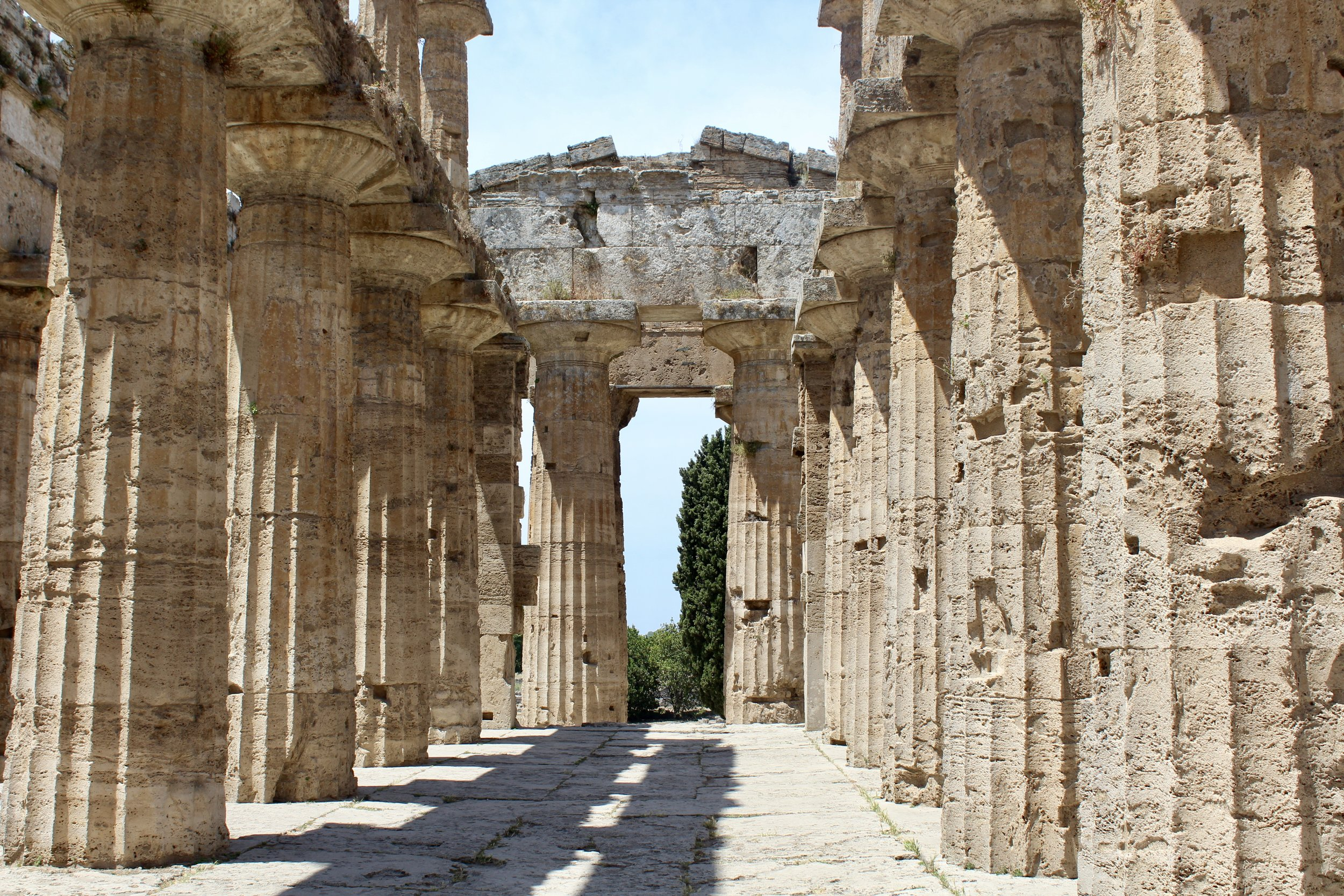 Ancient Greek temples at the Paestum archaeological park.