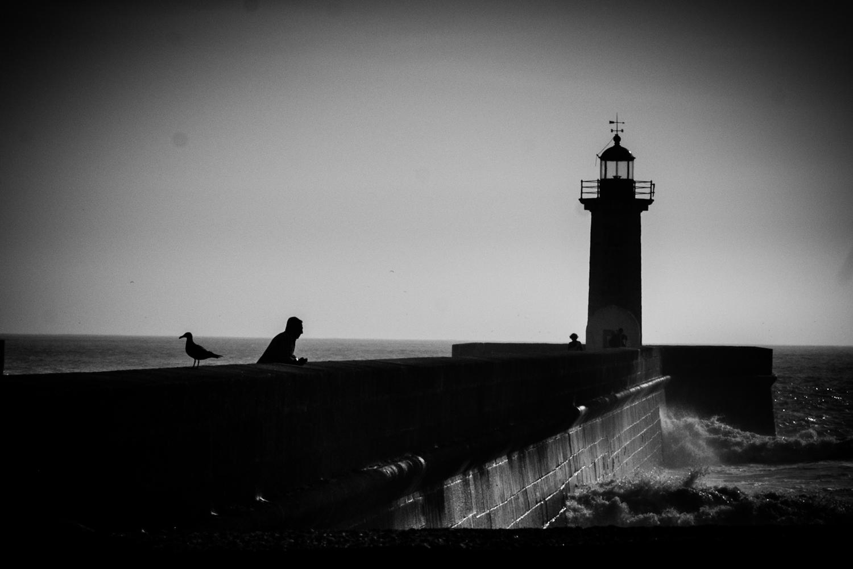 Porto Invicta   Portugal   2016