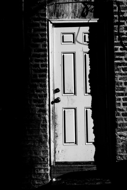 The Door, Chicago, 2016
