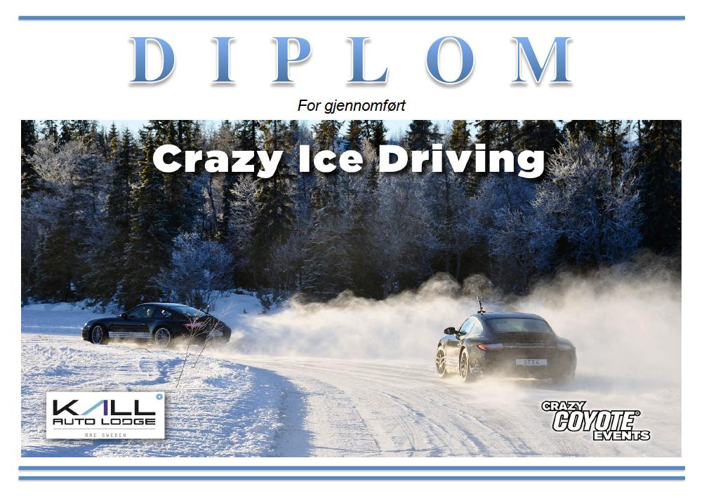 DIPLOM-CID.png