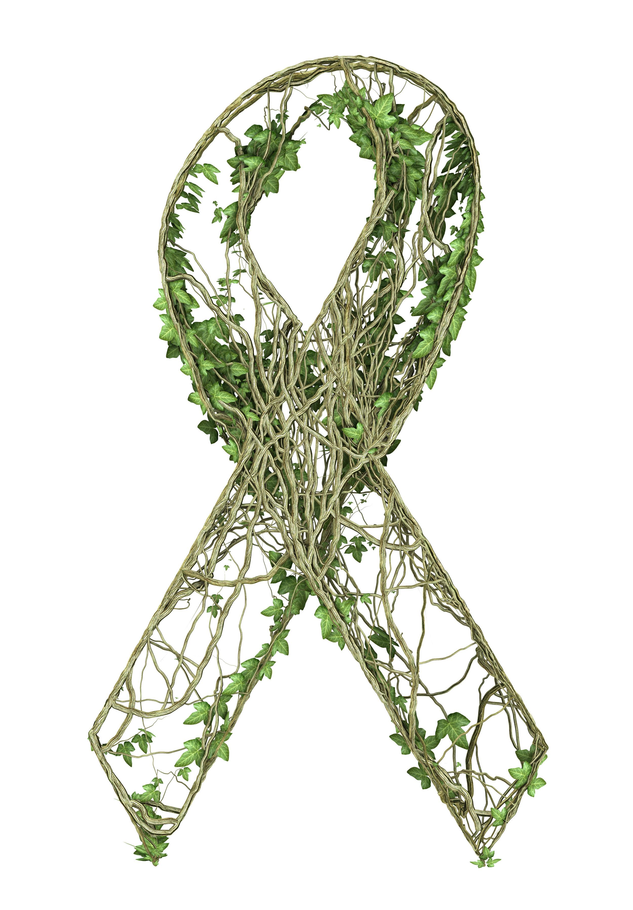 Ivy nature ribbon