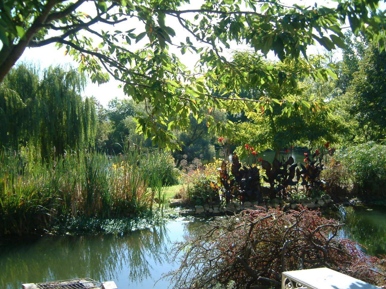 Garden from Dovecote.JPG
