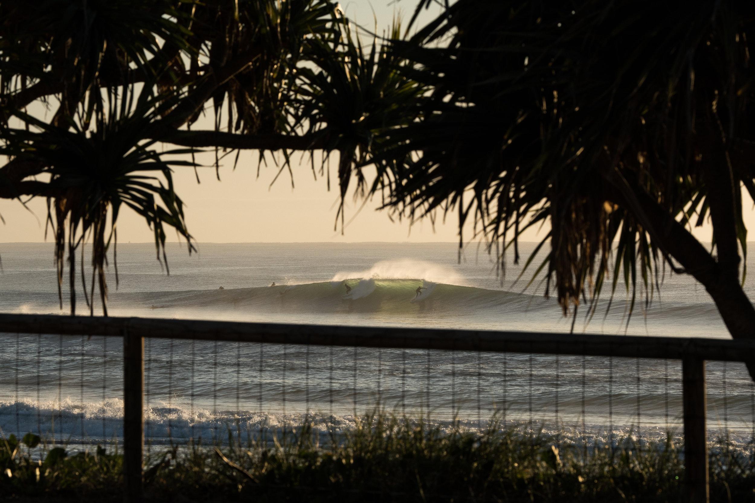snapper_rocks_australia_saltwater_6