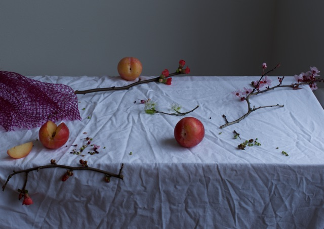 'Aftermath', Hattie Rutter