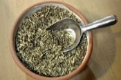 fennel-seeds-resized.jpg