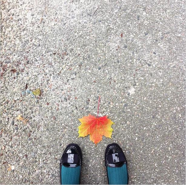 dionne.space autumn