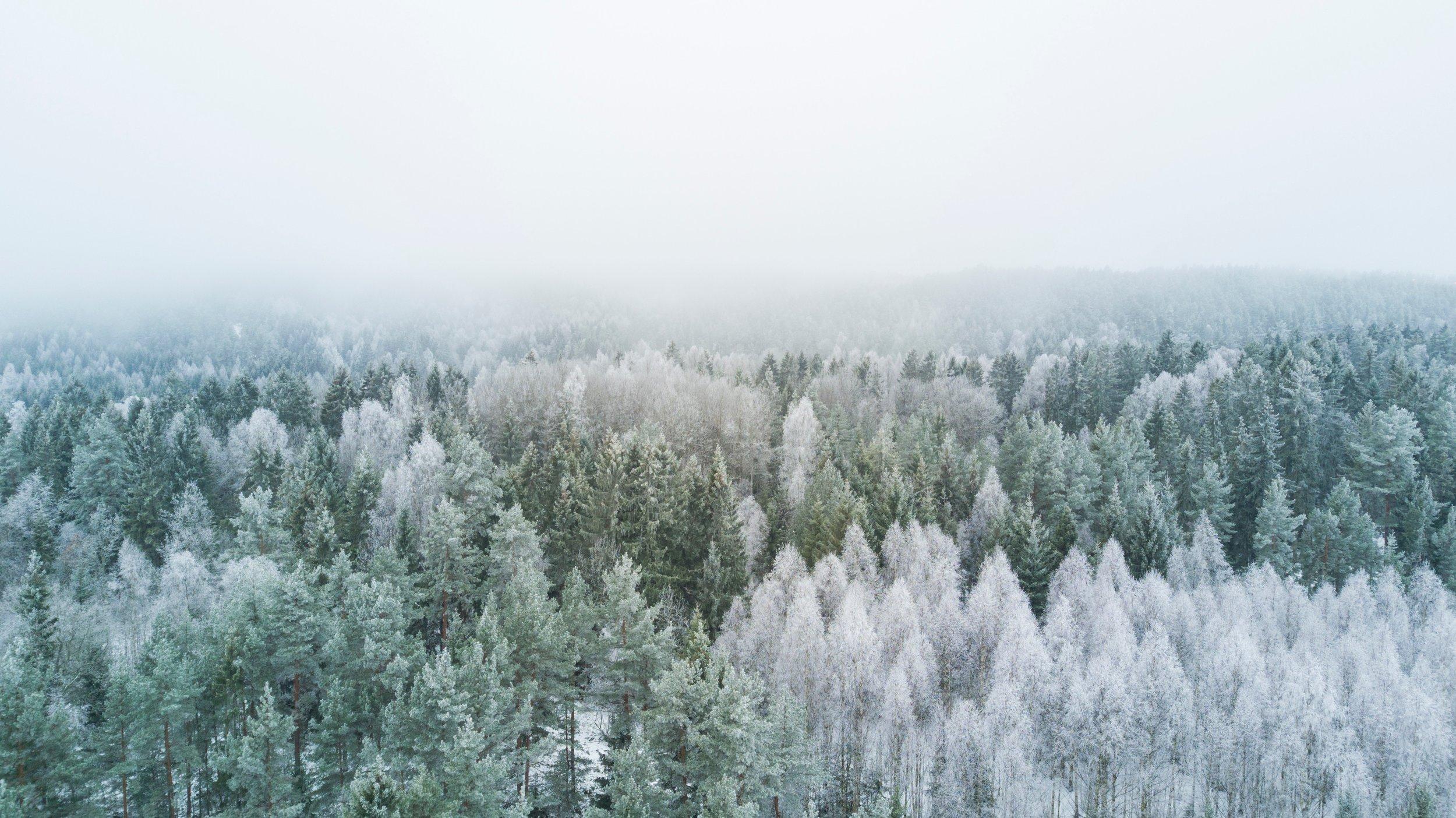 bergen winter workshops norway yoga dionne atle mo