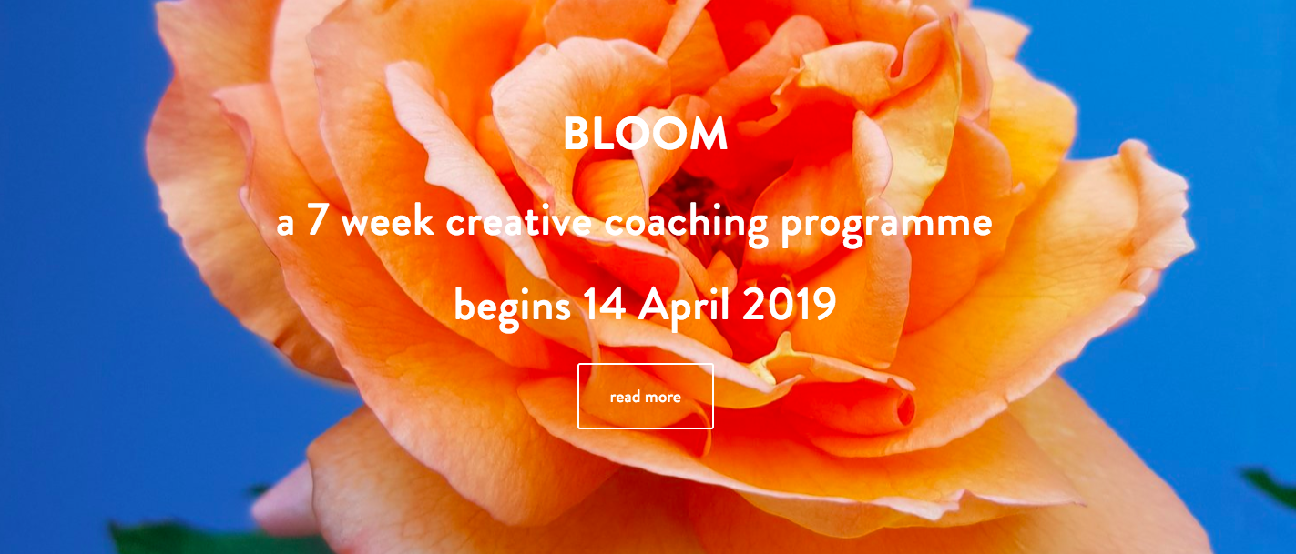 bloom new creative coaching programme with dionne elizabeth