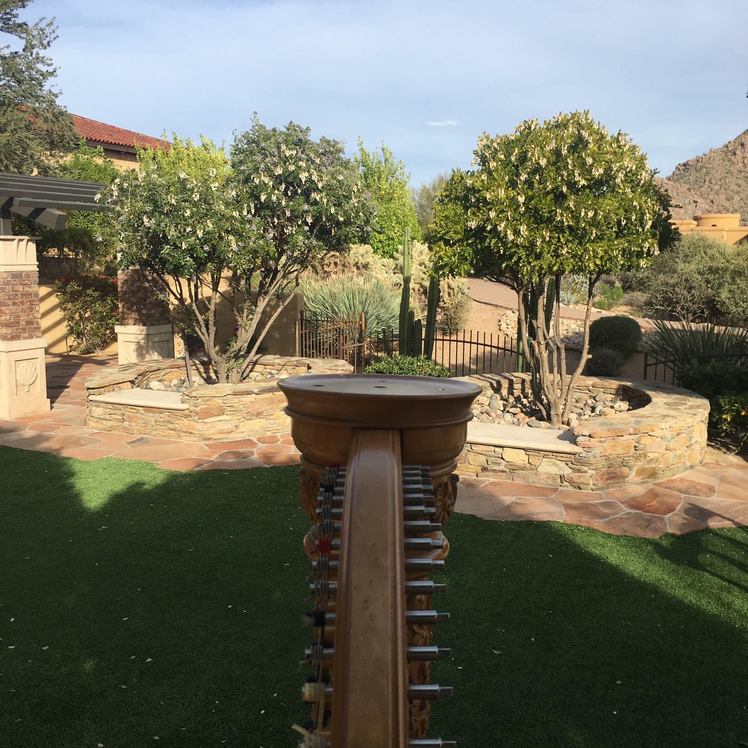 Sassi - Scottsdale