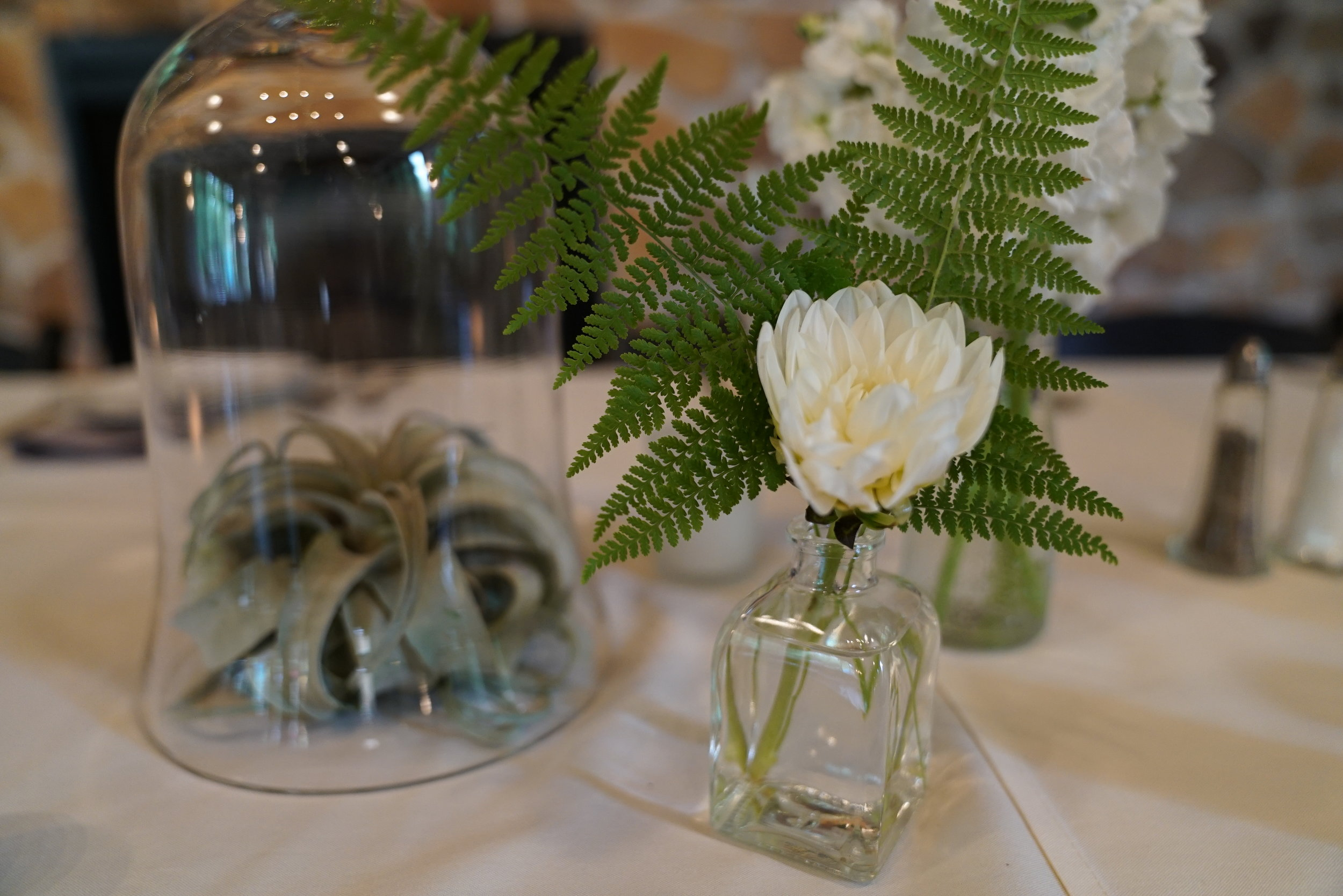 Dahlias, ferns and tillandsias on the head table. We set out vases for all the bridal bouquets so that they could get a drink of fresh water while everyone was dancing the night away.