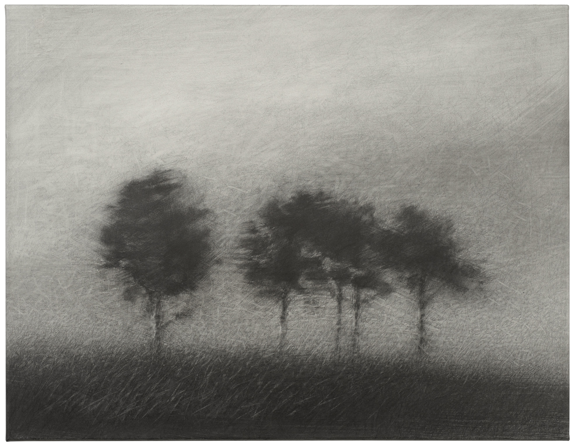 2014, graphite on paper laid down on canvas, 50x65 cm.
