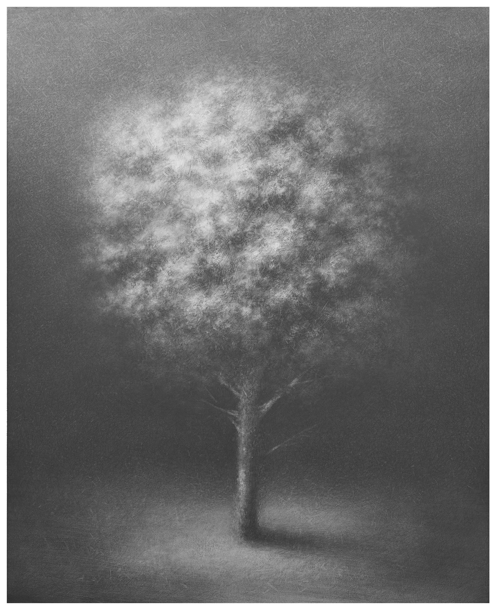 2016, graphite, pencil on paper laid down on canvas, 142x115 cm.