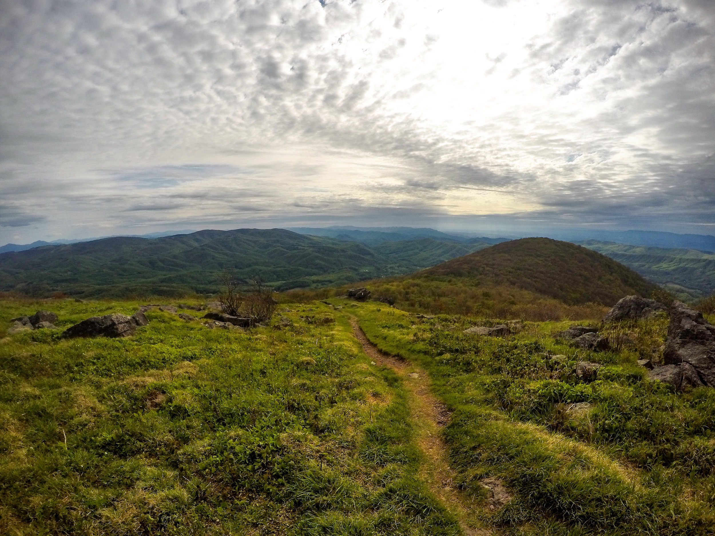 At least the hike out of Damascus was beautiful! This is on Whitetop mountain, the 2nd tallest peak in Virginia.