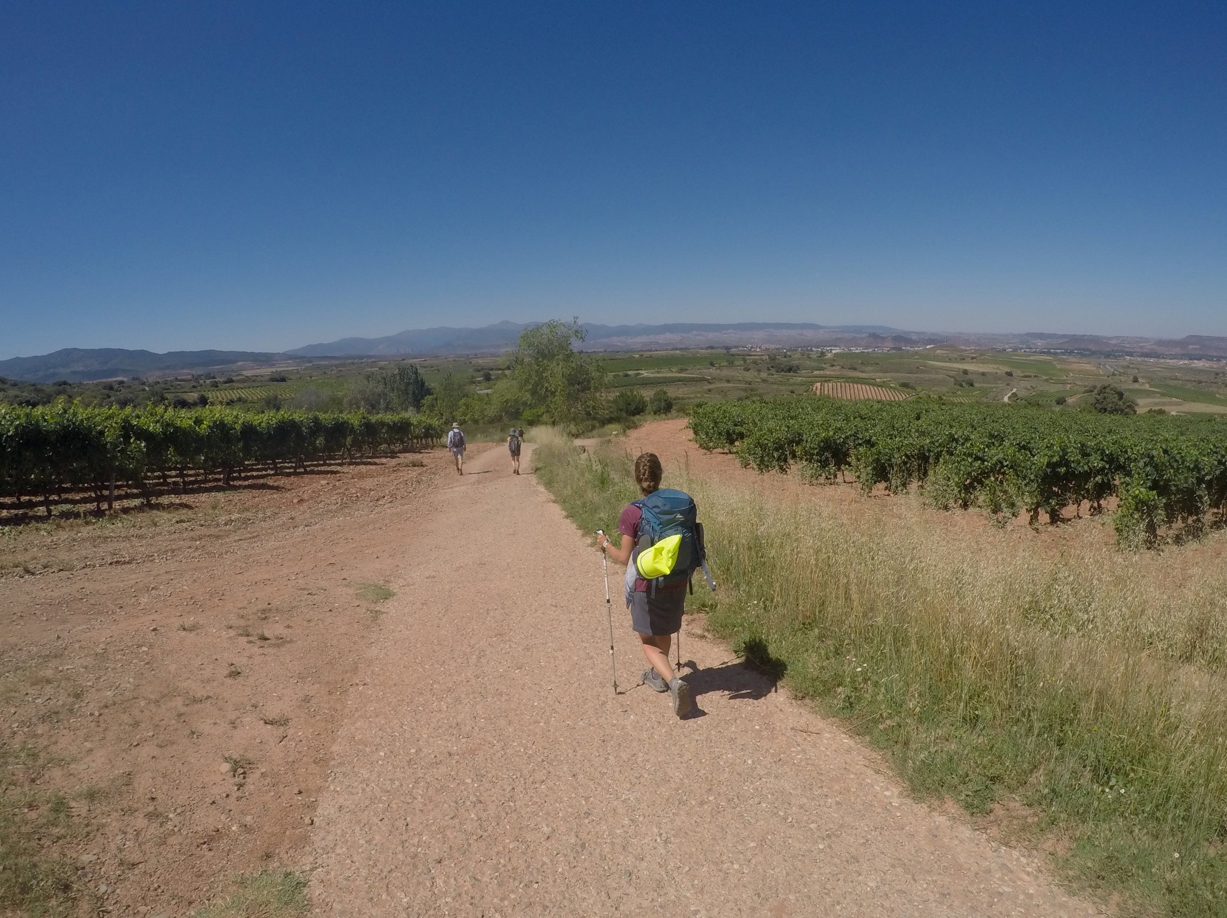 Walking through vineyards with Nájare in the distance