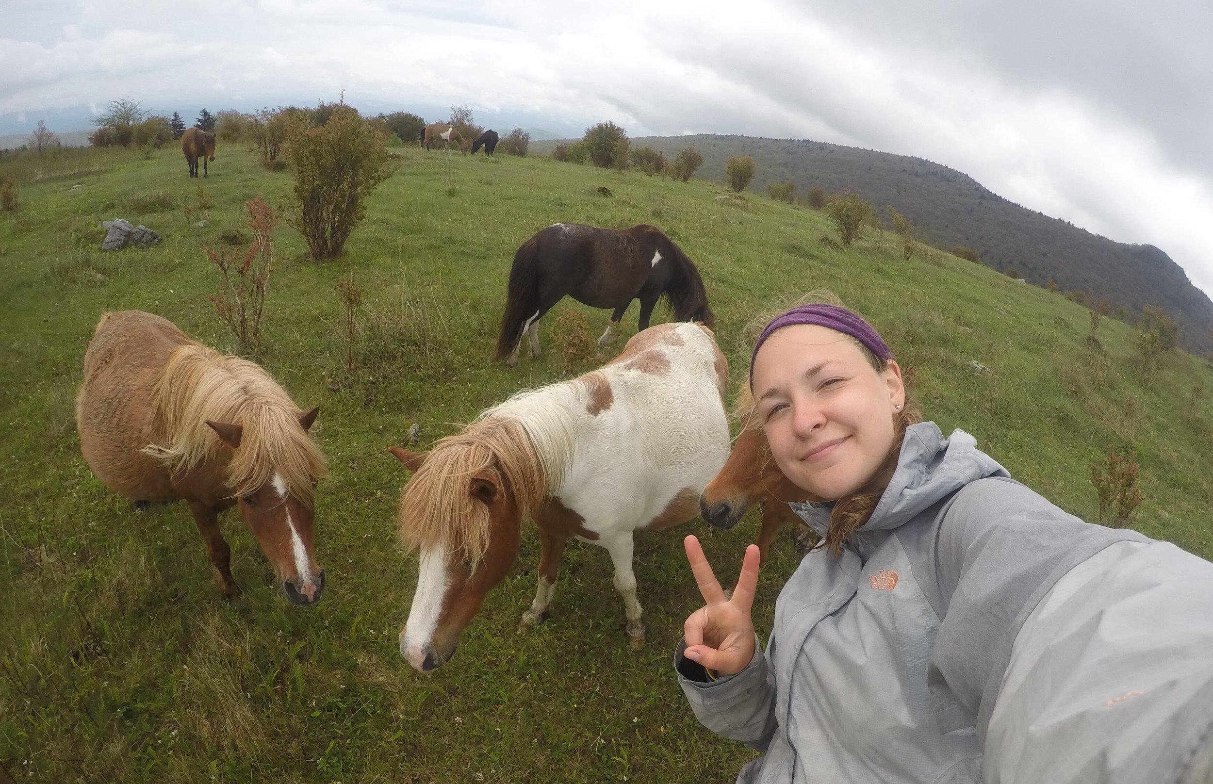 Appalachian Trail, Grayson Highlands, VA