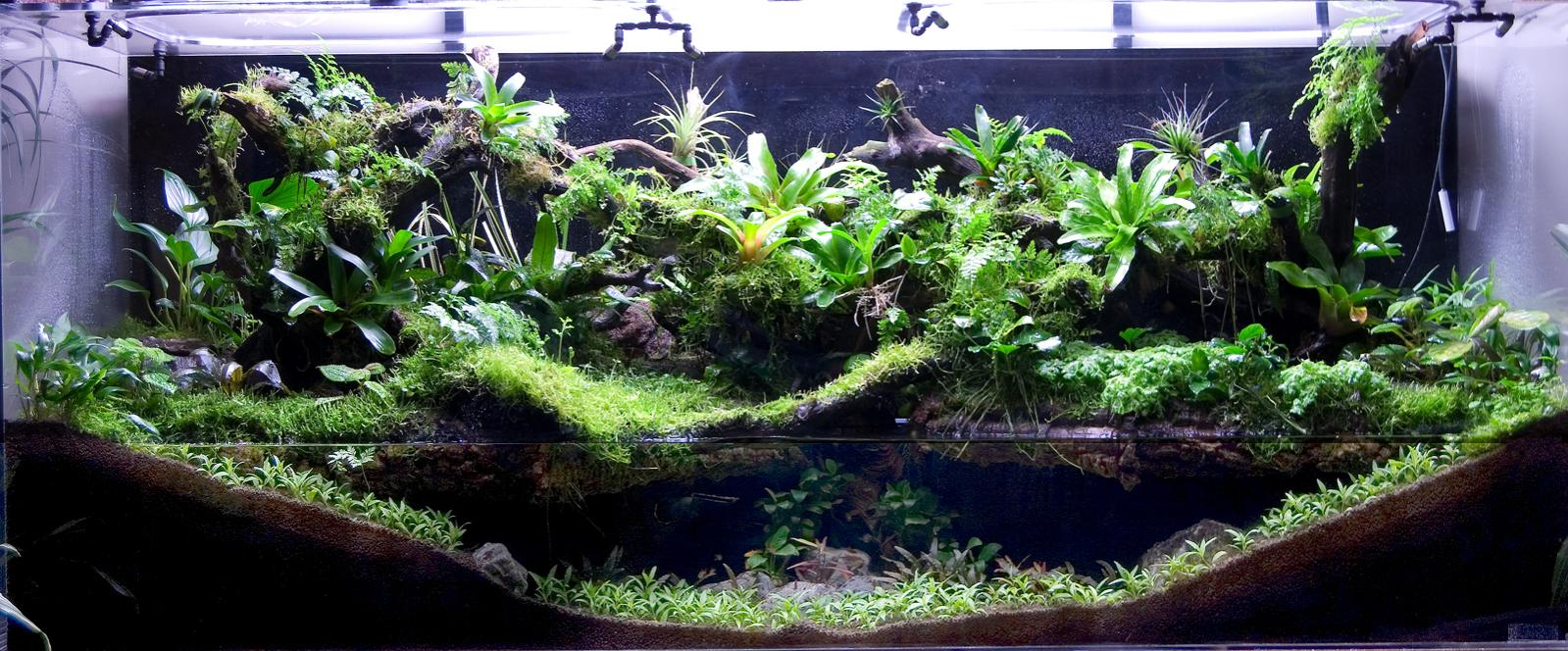 Aqua Landscaping