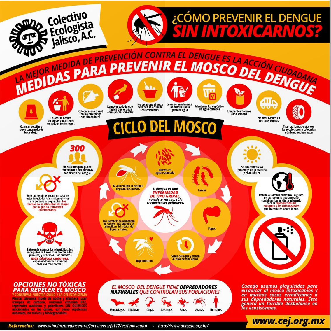Dengue_mockup 2.jpg