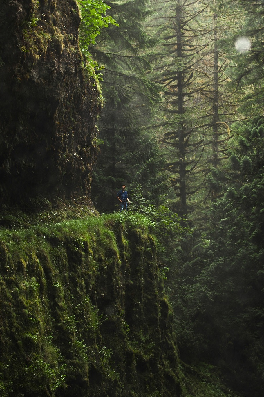 "mehgehd :      mtnsformiles :      decepticun :      Eagle Creek Trail, Oregon  | by  Chris Ebarb      hiking this soon     See! ""Oh that's lovely, wonder where it is, oh, fucking Oregon! Of course"""
