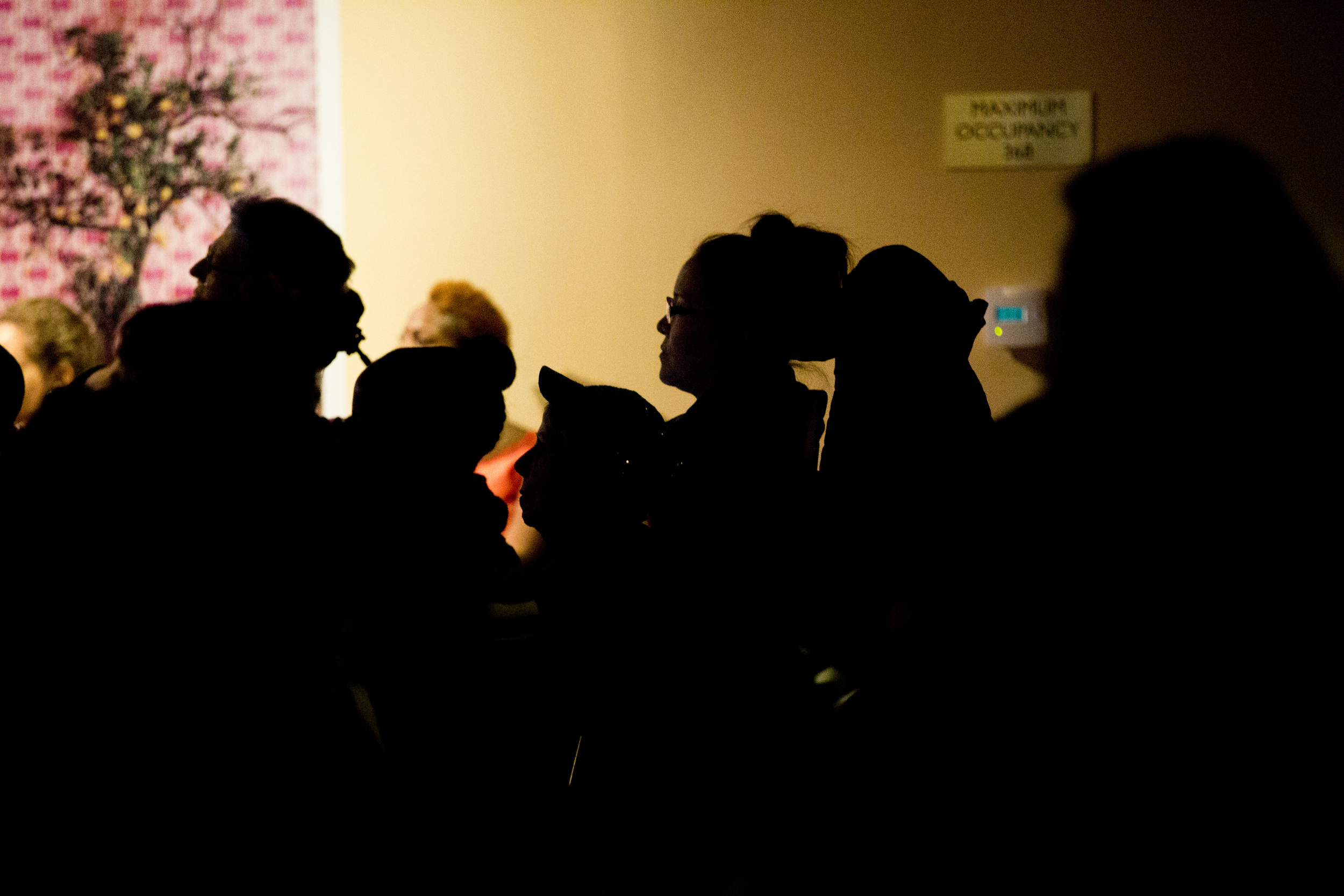 Silohouette of Saturday night audience.