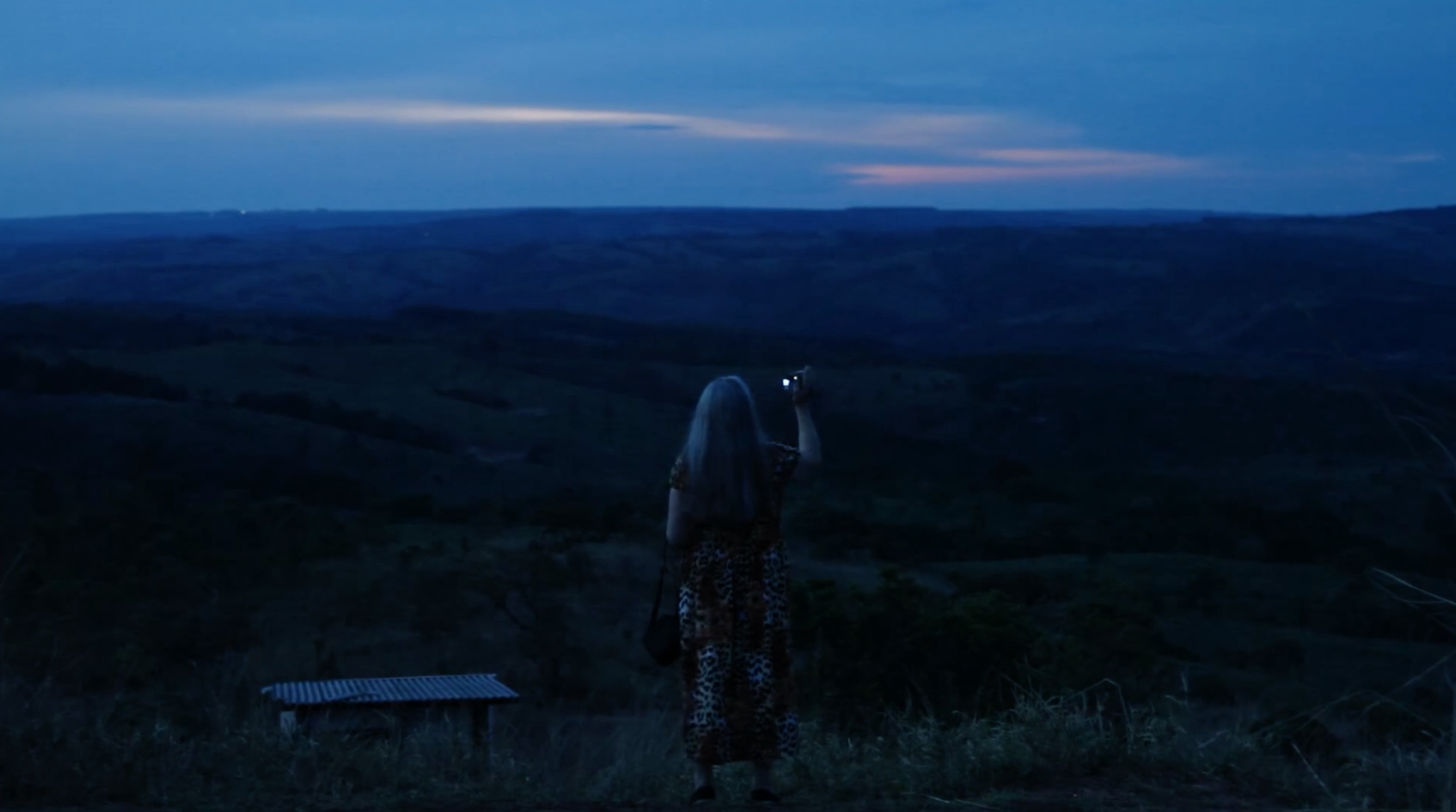 A woman stands on a ledge in front of a fresh night sky with low, blue light in front of an open frontier. She holds her phone up to photograph the scene.