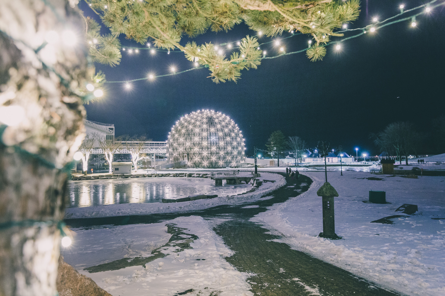 Cinesphere Snow  2063.jpg