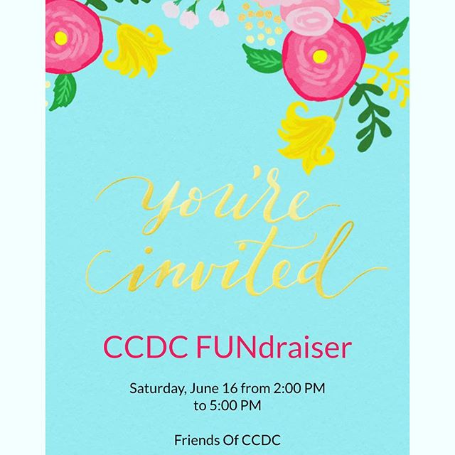 Looking for something really fun to do tomorrow?! Stop by our FUNdraiser tomorrow Saturday June 16th from 2 - 5pm at 3030 Dundas St W. Great live entertainment, activities for the kids, wonderful raffle prizes to be won and so much more! We are so grateful to the incredible ladies organizing the event and all of the businesses and individuals that donated. Thank you and see you tomorrow!