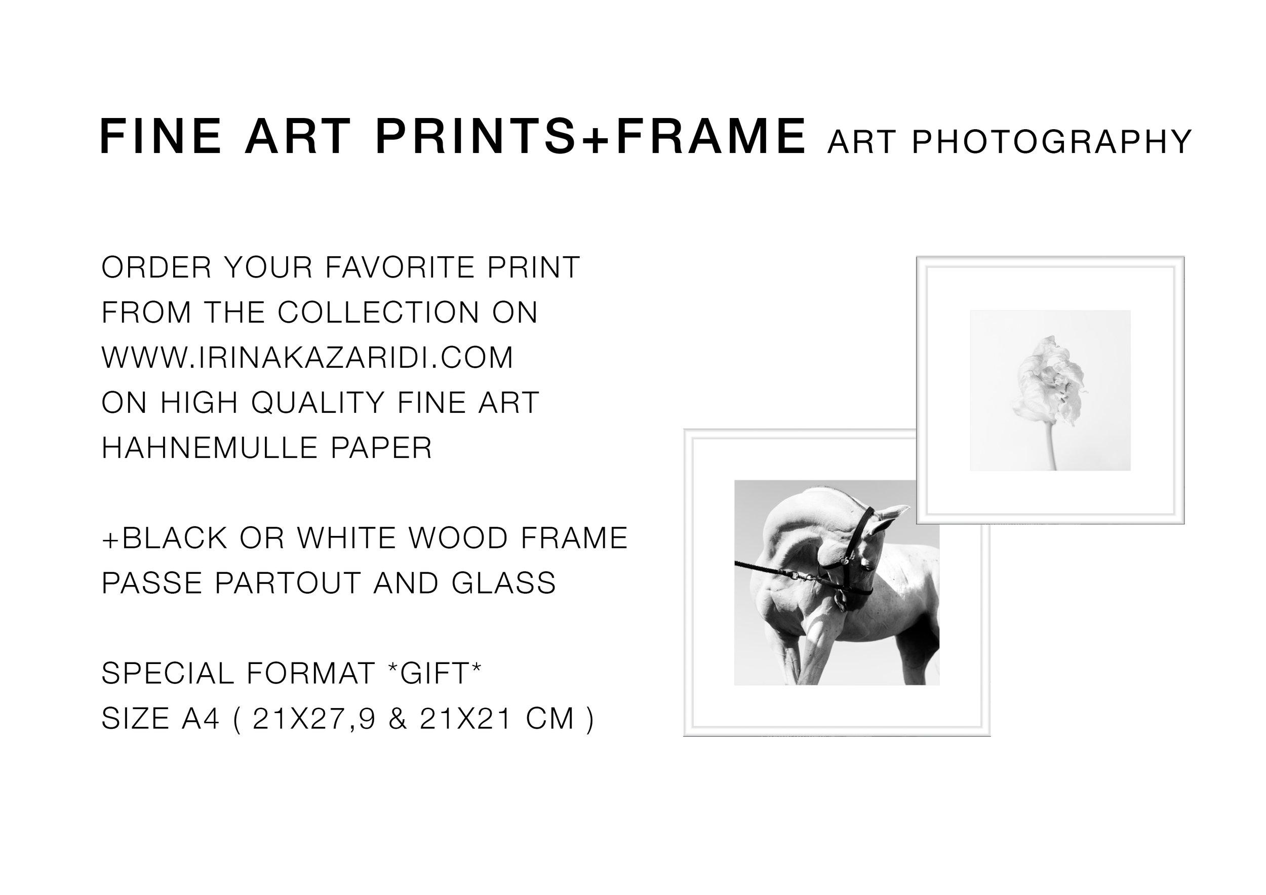 GIFT PRINT+Frame.jpg