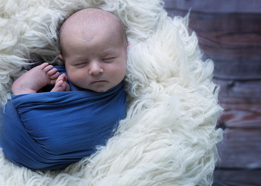 Twins Jaxon and William Sneak 6_Edmonton Newborn Photographer.jpg