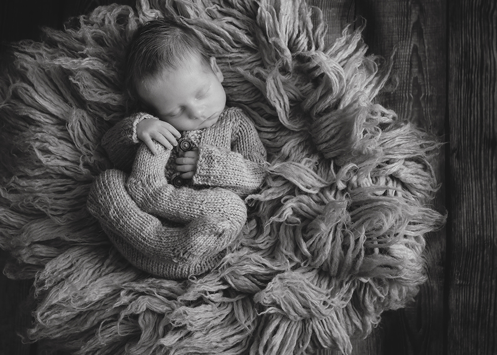 Edmonton LGBQT Newborn Photographer 7.jpg