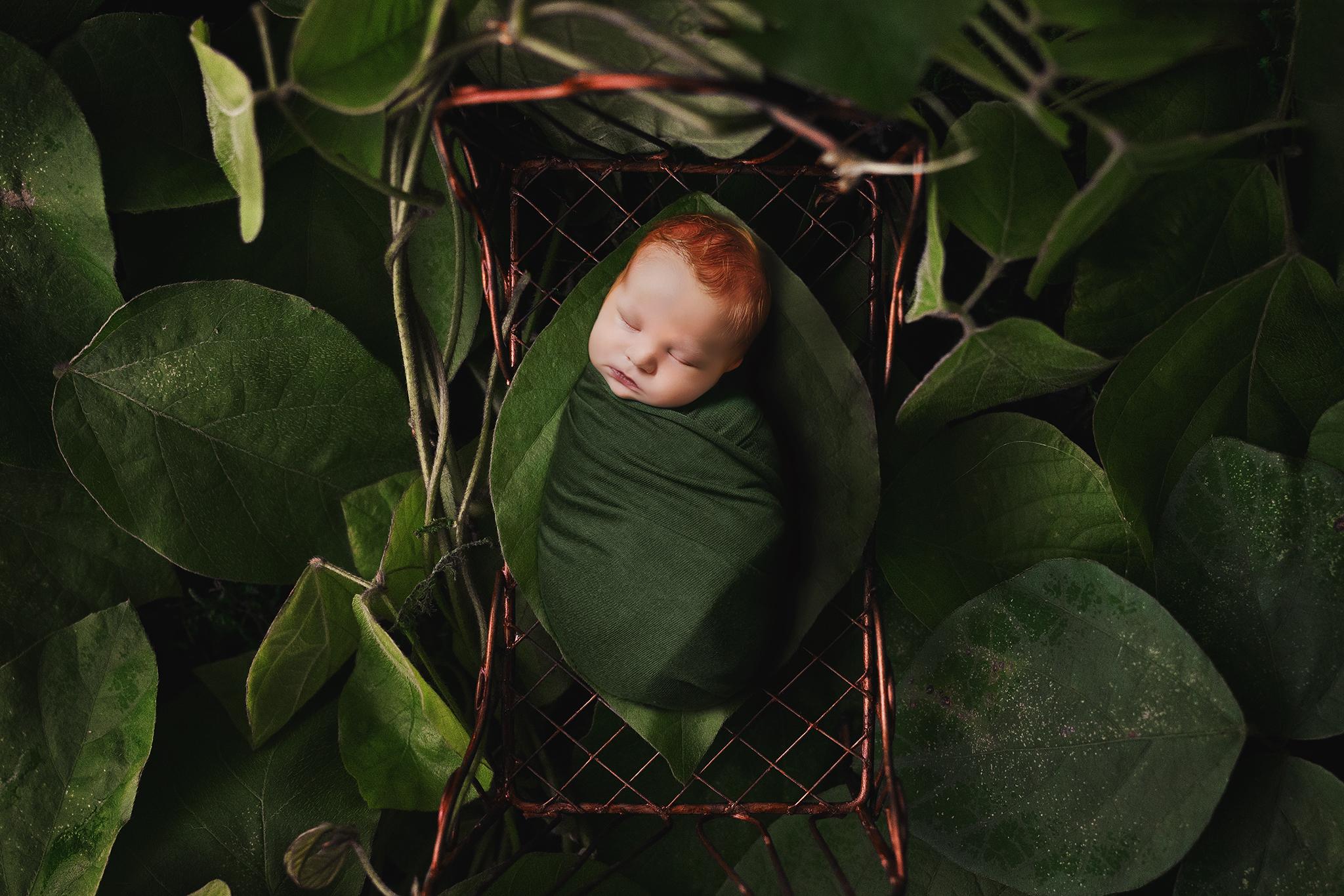 Edmonton Newborn Photographer_Baby Donovan 15.jpg