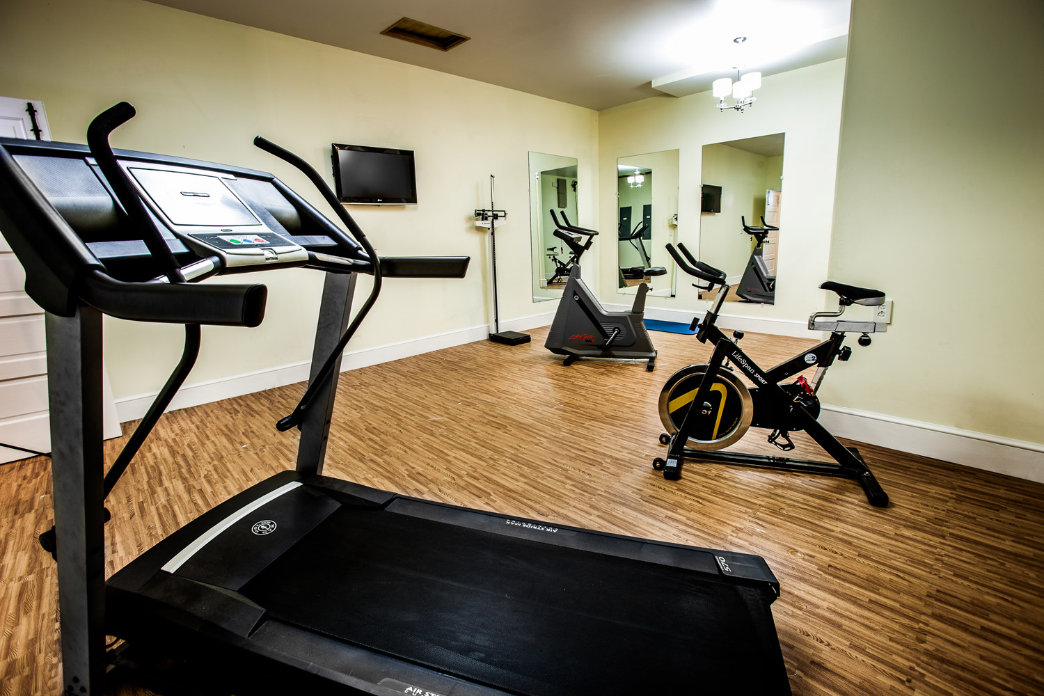 Workout room with a treadmill and two ellipticals.